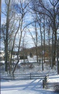 from my Pennsylvania window©booksandbuttons