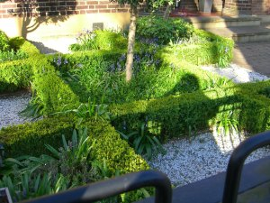 miniature box garden!