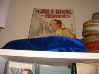and at the top, what's that great book of Girls' Book Heroines?  Must explore that one!  ©booksandbuttons