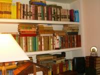 old girls' series books ©booksandbuttons